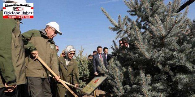 """""""11 Milyon Ağaç; Bugün Fidan, Yarın Nefes"""" kampanyasına rekor katılım"""