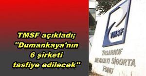 TMSF ''Dumankaya'nın 6 şirketi tasfiye edilecek''