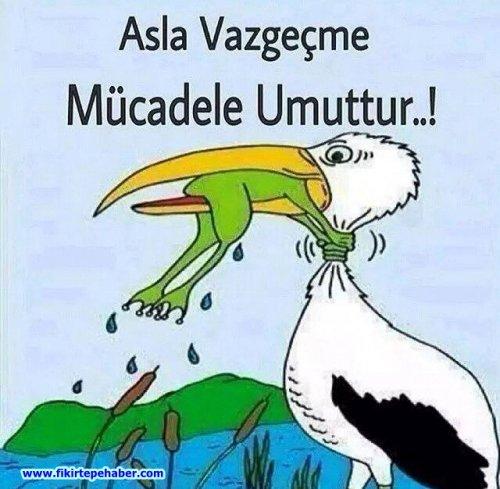MÜCADELE UMUTTUR ..!