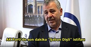 AK Parti Sakarya Milletvekili Şaban Dişli istifa etti